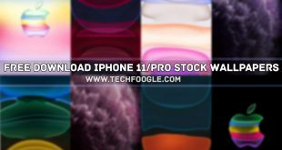 Free Download iPhone 11 Stock Wallpapers